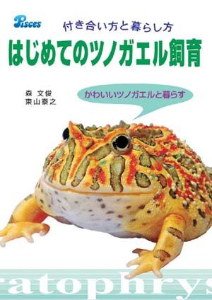 a5hornfrog